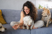 Podcasts That Dog Lovers Go Barking Mad For